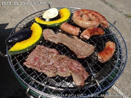 2013-05-05ねこまたカヤック (3)