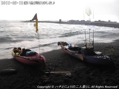 2013-05-12赤い魚が釣れました♪ (1)