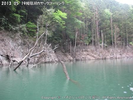 2013-05-19接阻湖カヤックツーリング (12)