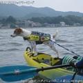 Photos: 2013-07-13カヤックツーリング (3)