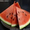 Photos: 2013年7月28日にょり青物GET!! (6)