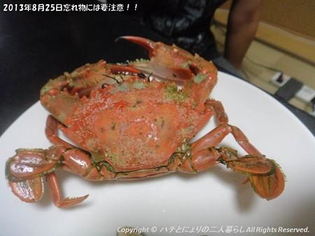 2013年8月25日忘れ物には要注意!! (7)
