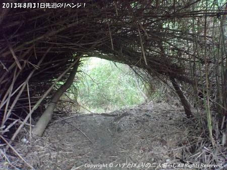 2013年8月31日先週のリベンジ! (11)