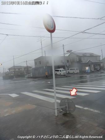 2013年9月15日台風襲来! (4)