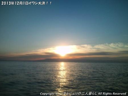 2013年12月1日イワシ大漁!! (2)