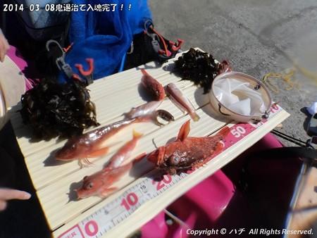 2014-03-08鬼退治で入魂完了!! (20)