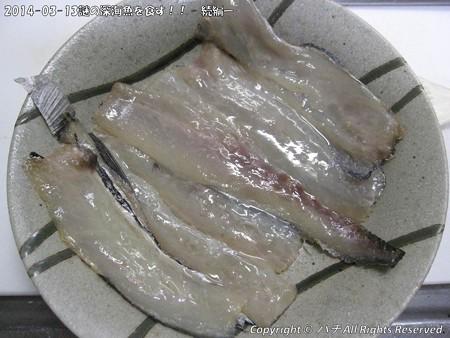 2014-03-13謎の深海魚を食す!! - 続編ー (1)