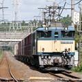Photos: 20120908-SS09-EF641012