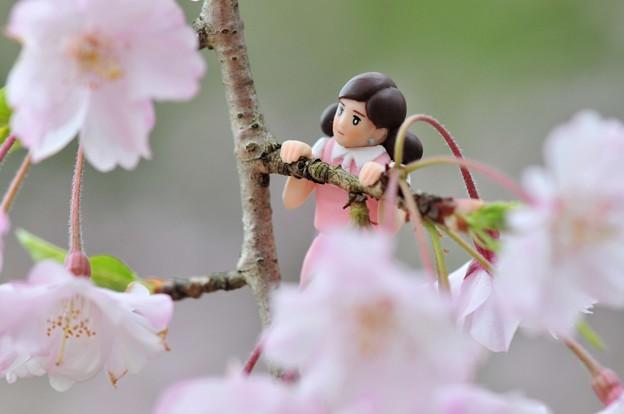 0406-花見のフチ子さん-08