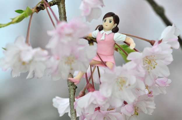 0406-花見のフチ子さん-10