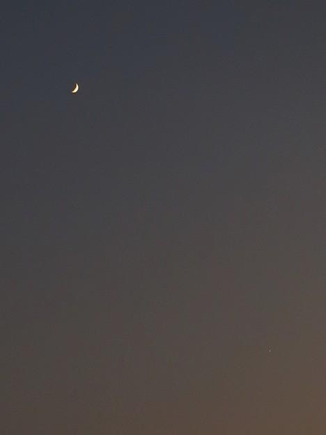 写真: 三日月と金星