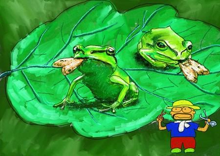 虫を採るカエル