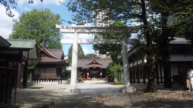 十二社熊野神社 (西新宿)