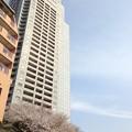 Photos: 聖路加タワーなう。