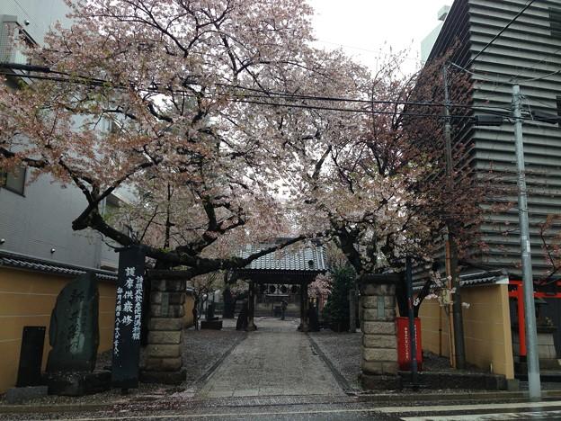 13.04.02.新井薬師(中野区)