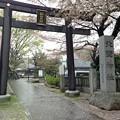 北野神社(新井天神)2
