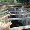 Photos: 見沼通船堀西縁一の関(さいたま市緑区)