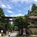 富岡八幡宮(江東区富岡)