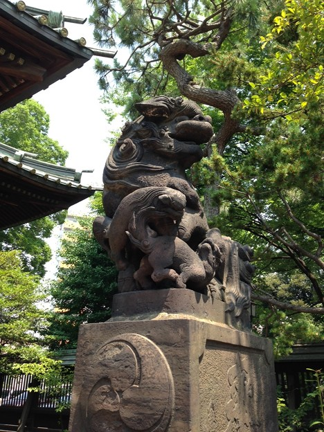 荏原神社(北品川)の狛犬・阿。