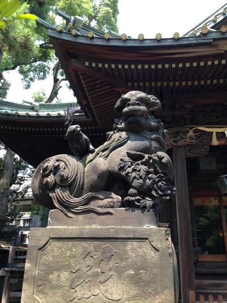荏原神社(北品川)の狛犬・吽。