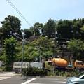 Photos: 品川神社(北品川)富士塚