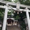Photos: 鳩ヶ谷氷川神社(川口市)