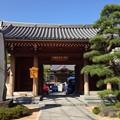 Photos: 源長寺(千住仲町)