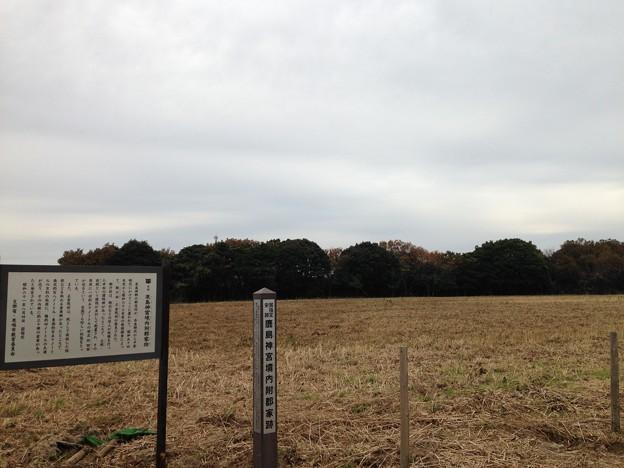 鹿島神宮境内附郡家跡(茨城県)