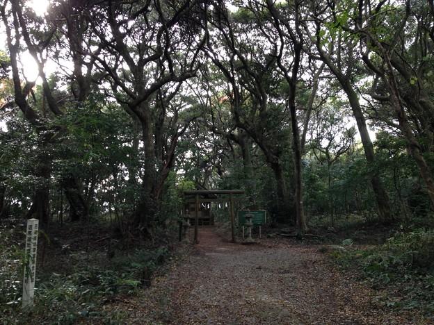 沼尾神社(鹿島神宮境外摂社)