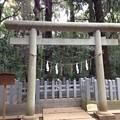 写真: 鹿島神宮 要石