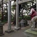 御手洗稲荷神社の狐様(息栖神社境内社)