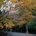 香取神宮 二の鳥居(香取市)