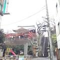 Photos: 市谷亀岡八幡宮(新宿区)