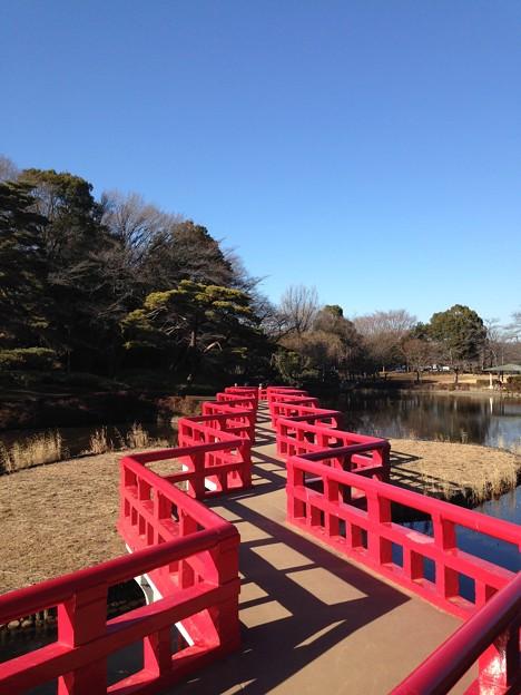 Photos: 八ツ橋(さいたま市立岩槻城址公園)