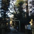 久伊豆神社(岩槻区宮町2丁目)