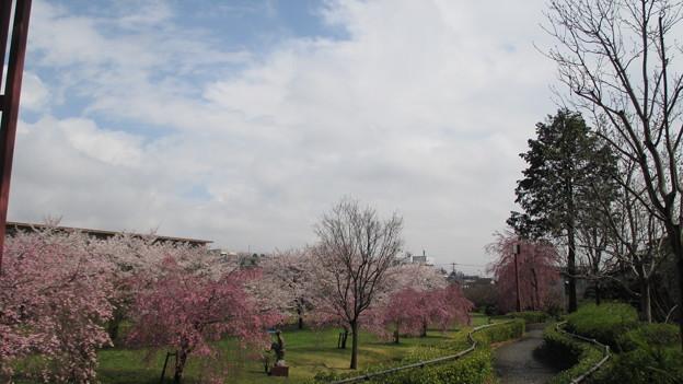 14.04.04.片倉城跡公園(八王子市)
