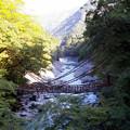 写真: 祖谷かづら橋