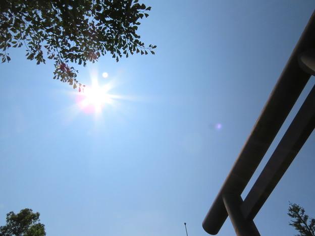 靖国神社鳥居と空