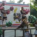 Photos: カキーーーンッ!