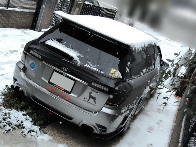写真: 雪風景
