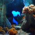 海中の洞窟