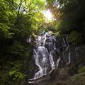 写真: 白糸の滝(02-p)