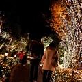 Photos: 街はクリスマス色に