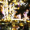 Photos: サンタが街にやって来た