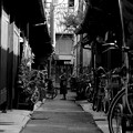 Photos: 京の路地裏さんぽ!
