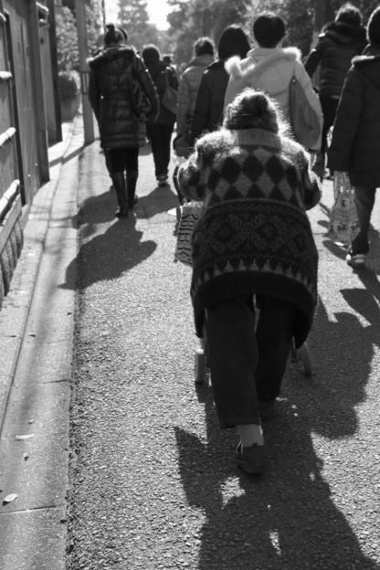 Photos: 冬の陽