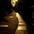 Photos: 銀色の道