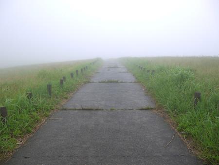 万年山~吉武台牧場から歩く(4)