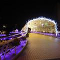 写真: 小倉・紫川のクリスマスイルミ2013(6)