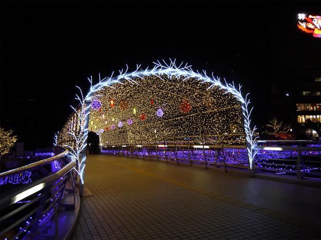 写真: 小倉・紫川のクリスマスイルミ2013(4)